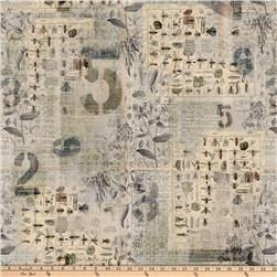 Tim Holtz Eclectic Elements Wallflower Entomology Multi