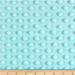 Minky Plush Dot Saltwater