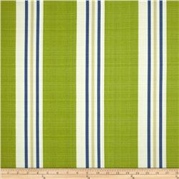 Richloom Solarium Outdoor Manzi Stripe Kiwi Fabric