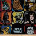 Star Wars Panel Black