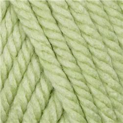 Lion Brand Hometown USA Yarn (173) Savannah Sage