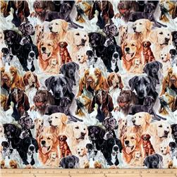 Animal Reign Hound Dogs Digital Print Multi