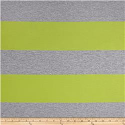 Rayon Spandex XL Stripe Grey/Lime