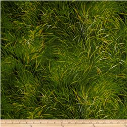 Lion Grass Green