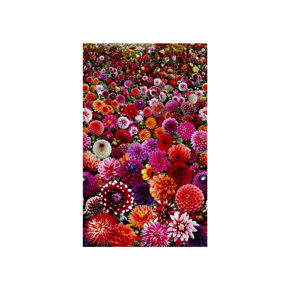Digital Garden Packed Flower Multi