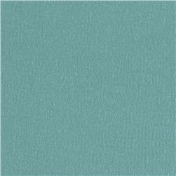 Stretch Rayon Jersey Knit Aquamarine