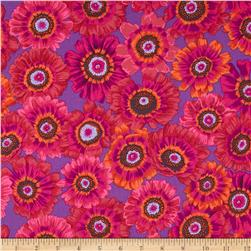 Kaffe Fassett Collective Painted Daisy Magenta Fabric
