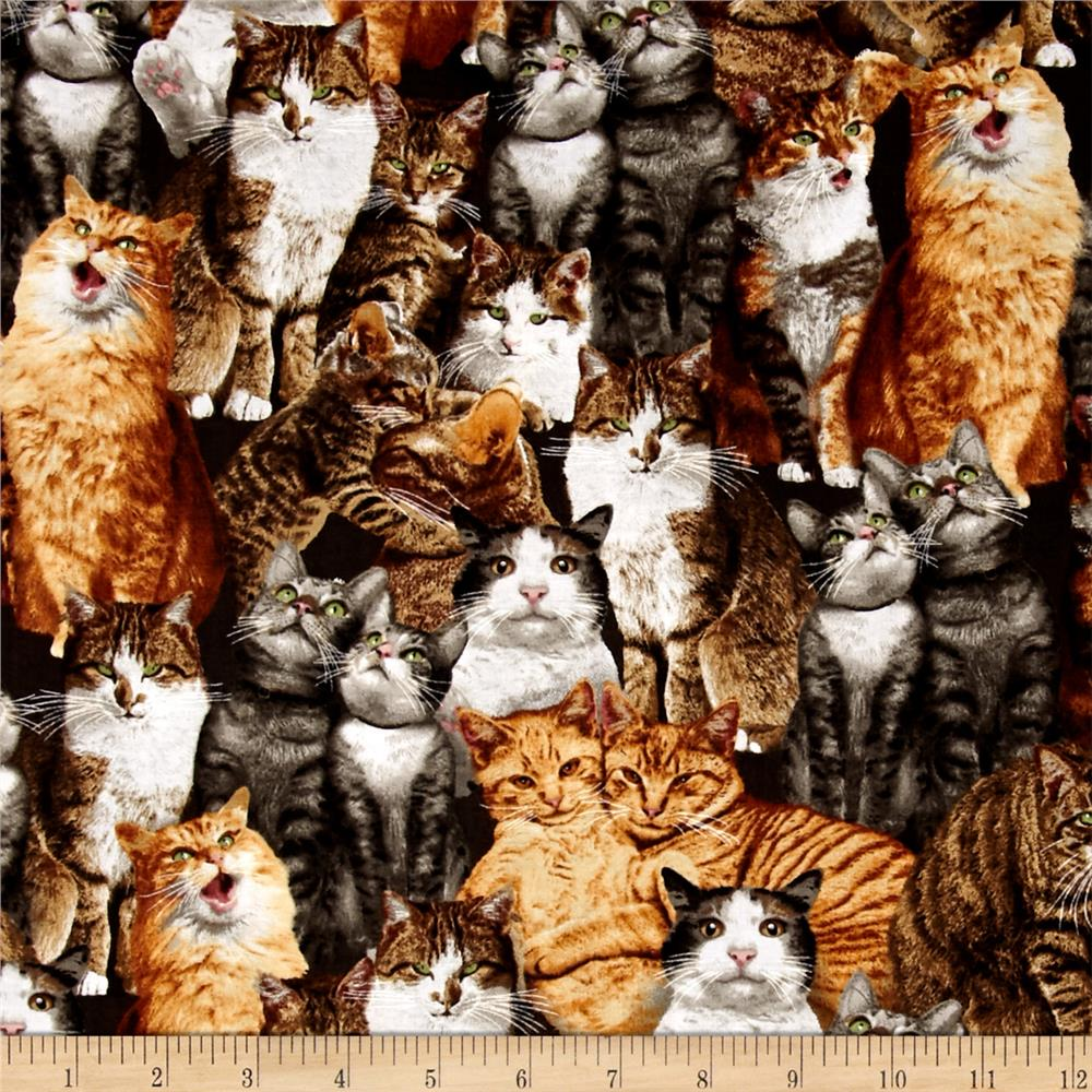 Kaufman Cat Crazy Cat Collage Multi