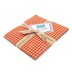Riley Blake Basics Small Gingham 5'' Stackers