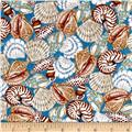 Seaside Dreams Packed Shells Teal