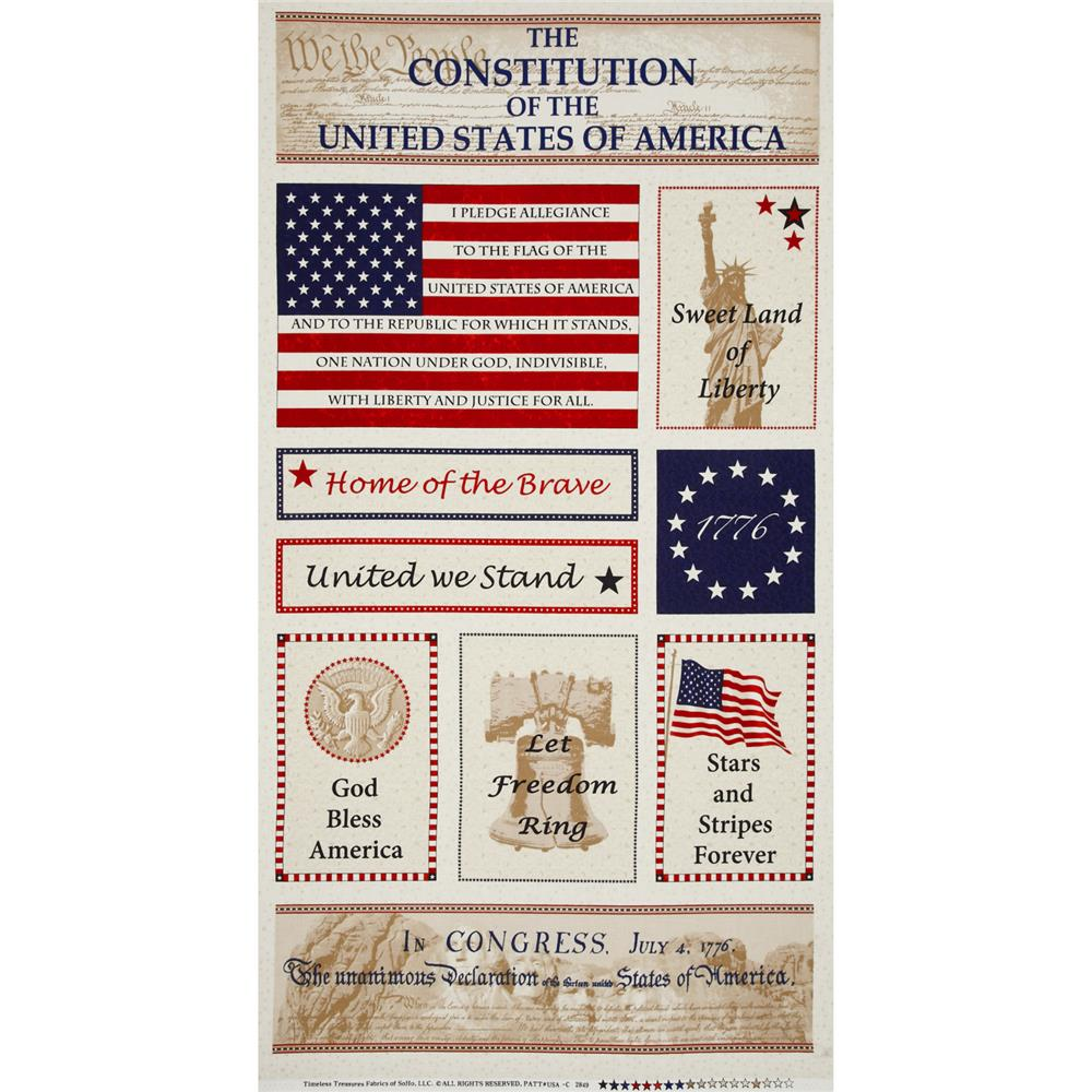 "Timeless Treasures Americana 24"" Panel USA"