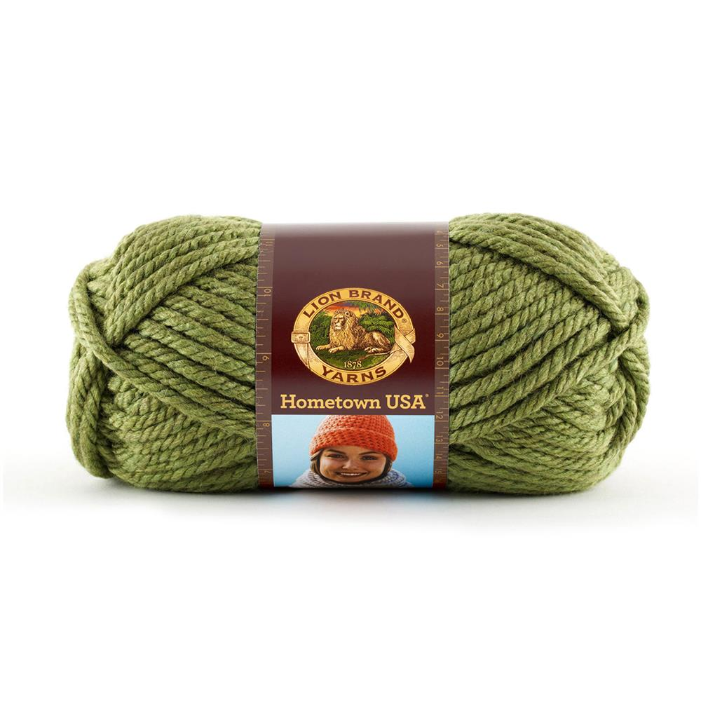 Lion Brand Hometown USA Yarn (172) Oklahoma City Green