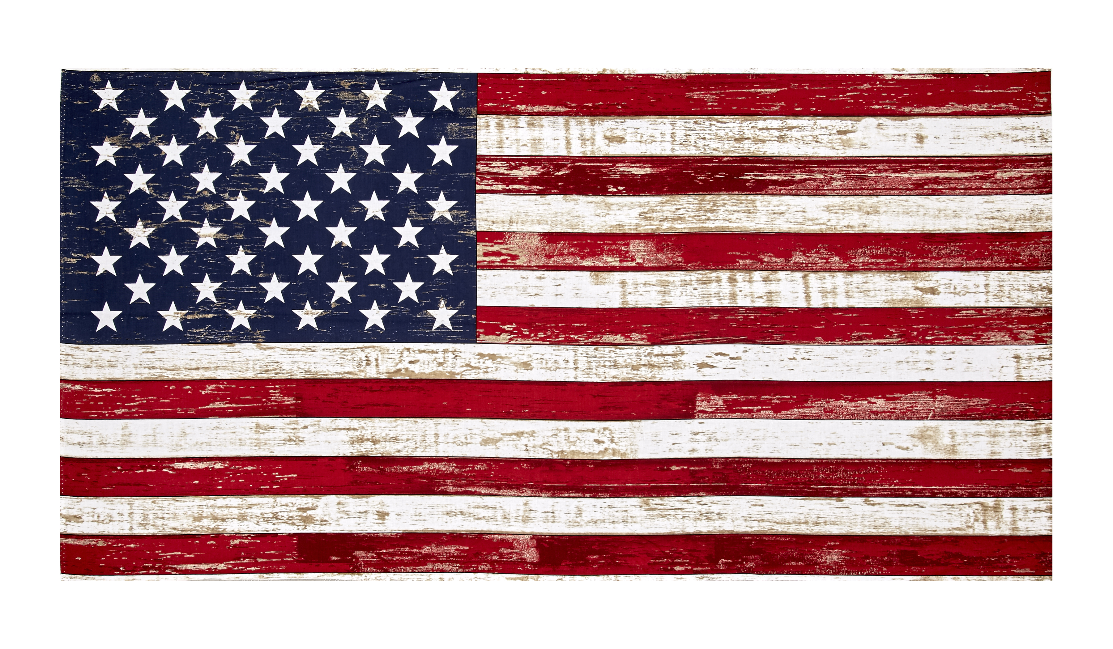 Image of Timeless Treasures American Pride 23.5'' American Flag Panel Flag Fabric