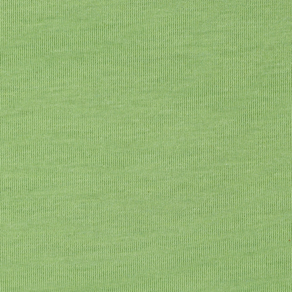 Rayon Poly Lycra Jersey Knit Grass Green Fabric