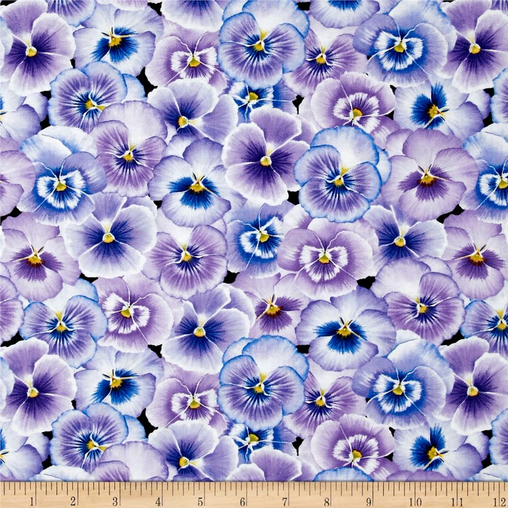 Pretty As A Pansy Packed Pansy Flower Purple Blue