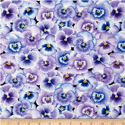 Pretty As A Pansy Packed Pansy Flower Purple/Blue