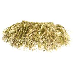 "Trend 2.25"" 01464 Brush Fringe Celery"