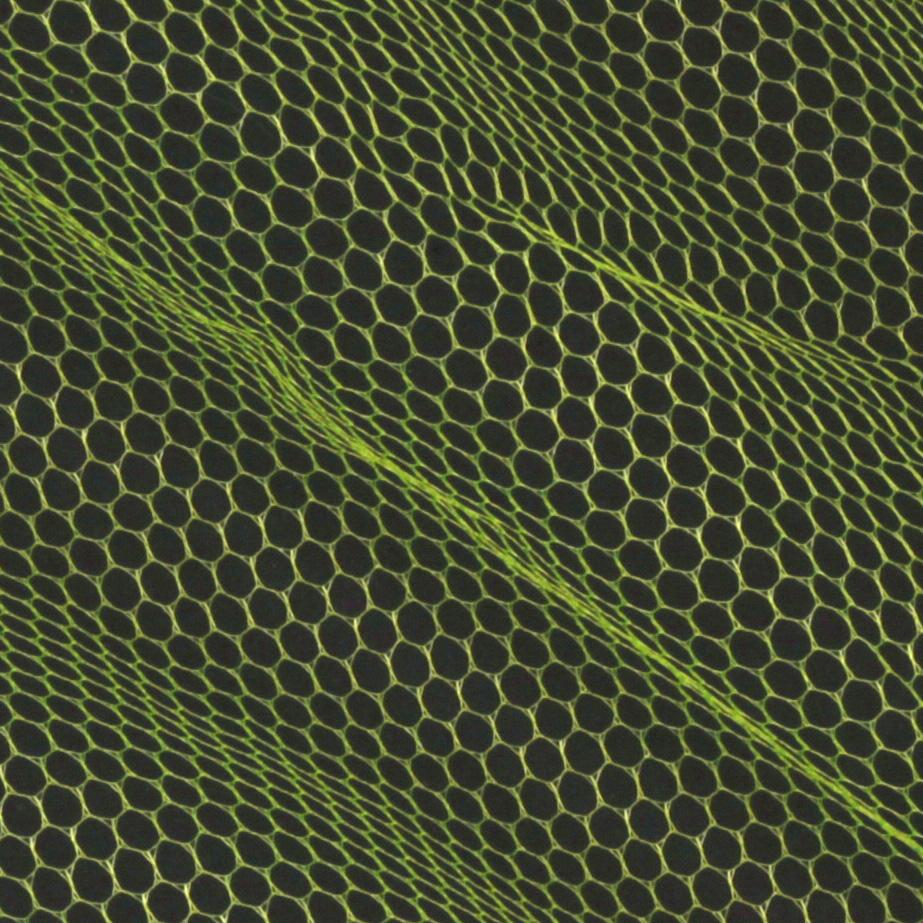 Nylon Netting Citrus Green Fabric By The Yard