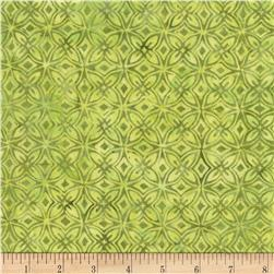 Timeless Treasures Tonga Batiks Kiwi Kaleidoscope Kiwi