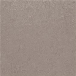 Fabricut 03343 Faux Leather Aluminum