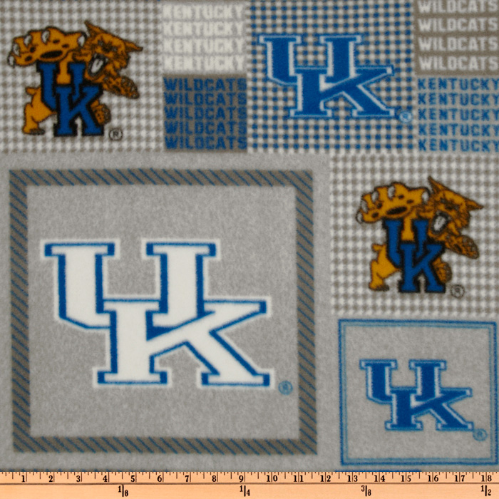 Collegiate Fleece University of Kentucky Plaid Blocks Fabric
