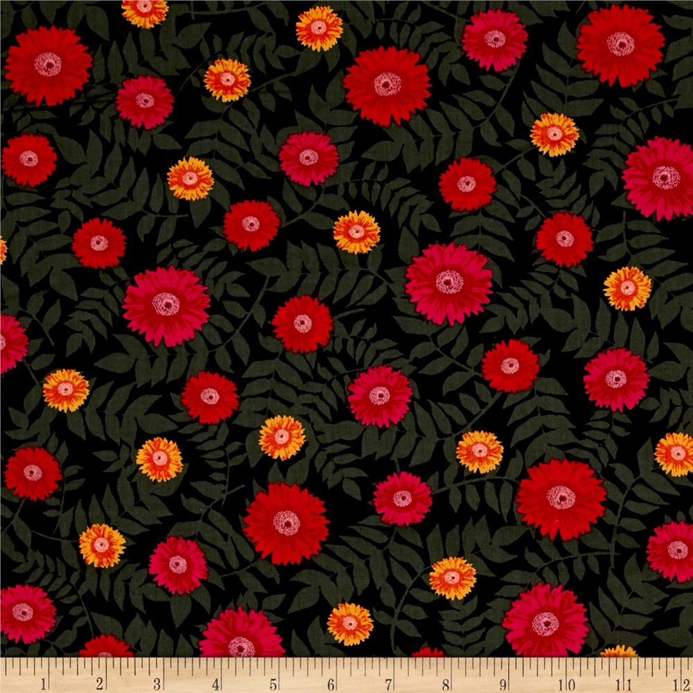 Kanvas Floral Philosophy Daisy Black