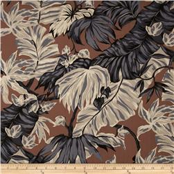 Canopy Cove Foliage Brown
