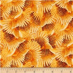 Wild Pheasants Feathers Amber