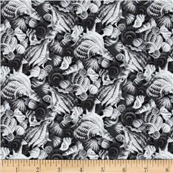Coral Sea Seashells Black/Grey Fabric