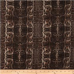 Talulah Tweed Python Dark Brown