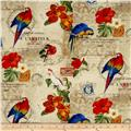 Rainforest Parrots & Flowers Multi