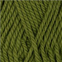 Patons Classic Wool Yarn (00240) Leaf Green