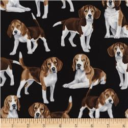 Timeless Treasures Beagles Beagle