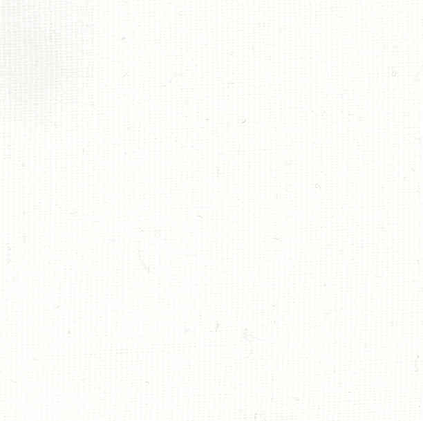 Image of Canvas White Fabric