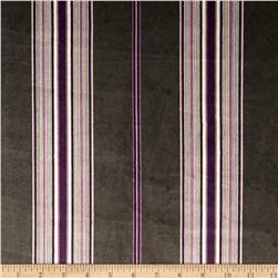 Minky Fantasy Founding Stripe Plum