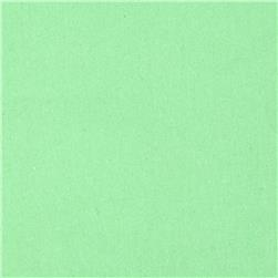 Cotton/Lycra Stretch Jersey Seafoam Green
