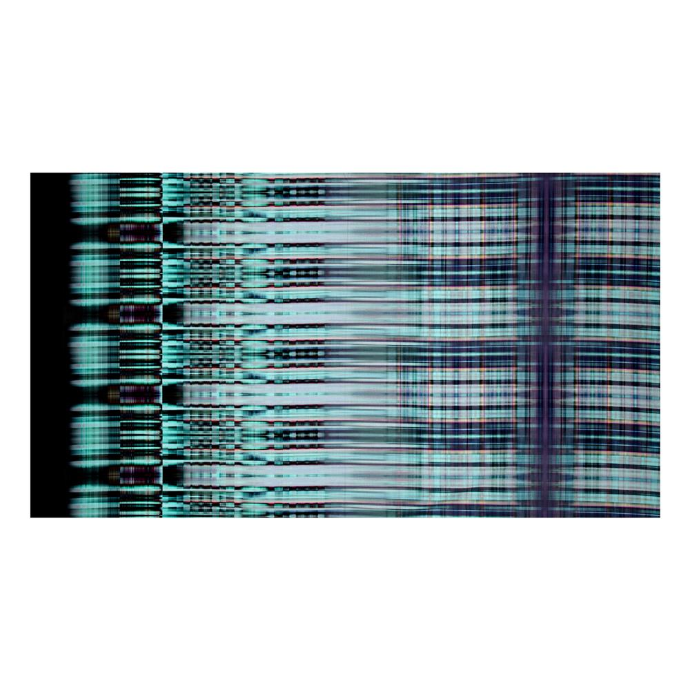Mystic Meadow Digital Print Plaid Dragonfly