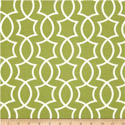 Richloom Solarium Outdoor Titan Kiwi Home Decor Fabric