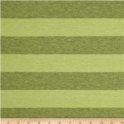 Yarn-Dyed Jersey Stripe Knit Green