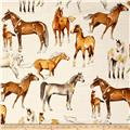 Alexander Henry Santa Fe Love of Horses Natural