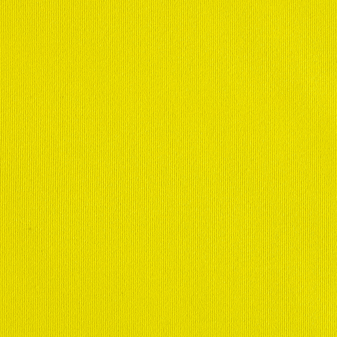Tricot Solid Neon Yellow Fabric by Mike Cannety in USA
