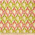 Swavelle/Mill Creek Indoor/Outdoor Ozbel Screen Sorbet