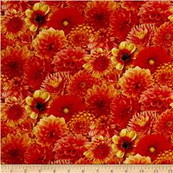 Digital Garden Packed Flower Marigold