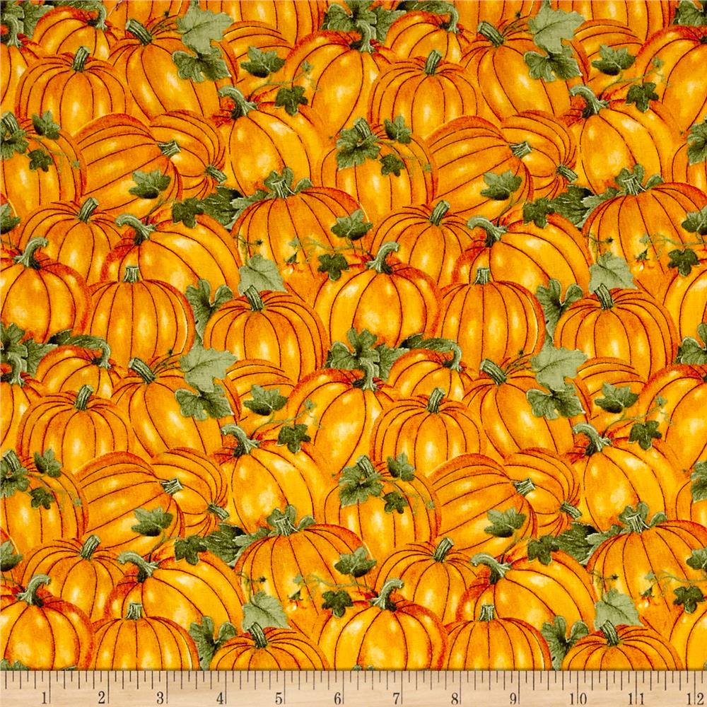 Colors of Fall Packed Pumpkins Orange