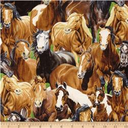 Wild at Heart Packed Horses Multi