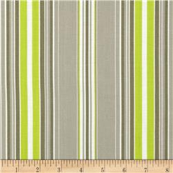 Contempo Brigitte Wallpaper Stripe Grey