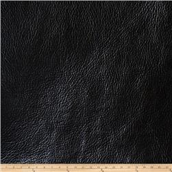 Fabricut Galvanized Steel Faux Leather Onyx