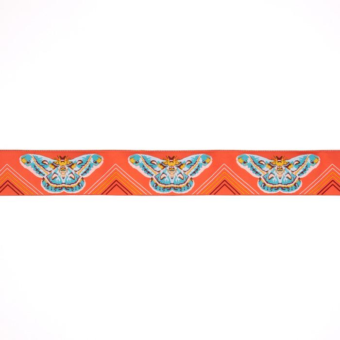 "1-1/2"" Anna Maria Horner Moths Ribbon Orange/Aqua"