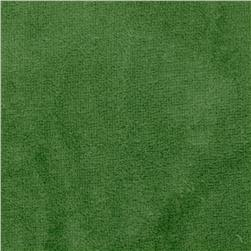 Whisper Coral Fleece Solid Lawn Green Fabric