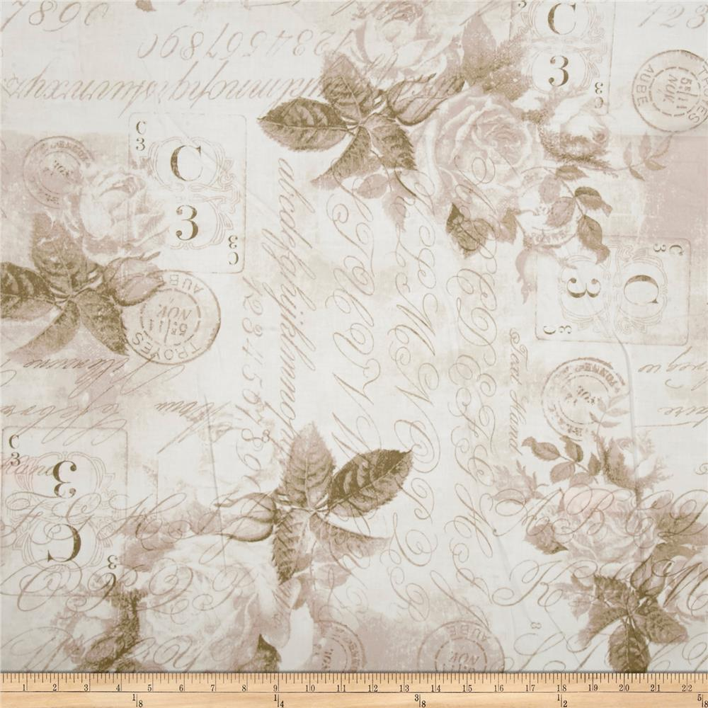 "Tim Holtz Eclectic Elements 108"" Quilt Backing Rose Parcel Taupe"